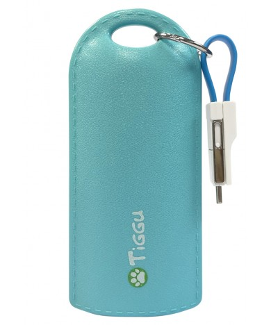 Power Bank - Keychain Series - TPB-483-BU